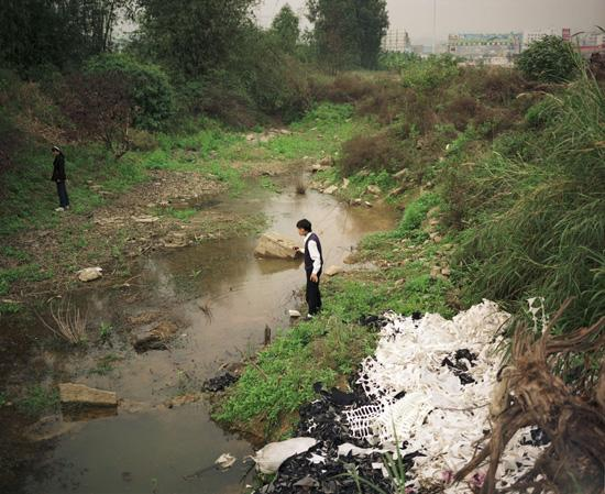 Migrants Collecting Snails, Guangdong, 1996